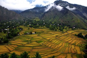 Nokot_Leep_Valley_Muzaffarabad_Azad_Kashmir_AJK_Tourism_AZAD_Kashmir_Tourism