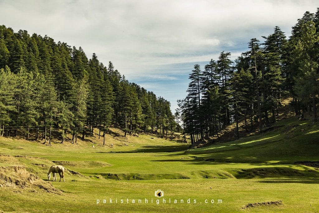 places-to-visit-in-Muzaffarabad-sri-kot-shaheed-gali
