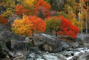 Gulmit, Upper Hunza, Gilgit-Baltistan (1)