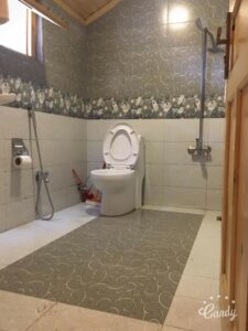 Swiss Wood Bathroom