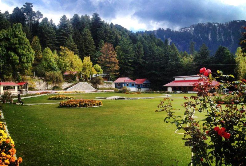 pine-park-shogran-hotel